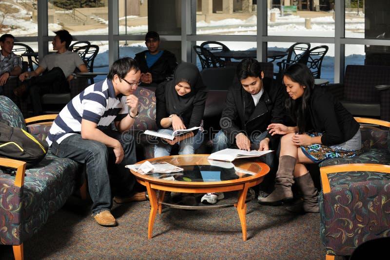 不同组学员学习 免版税库存照片