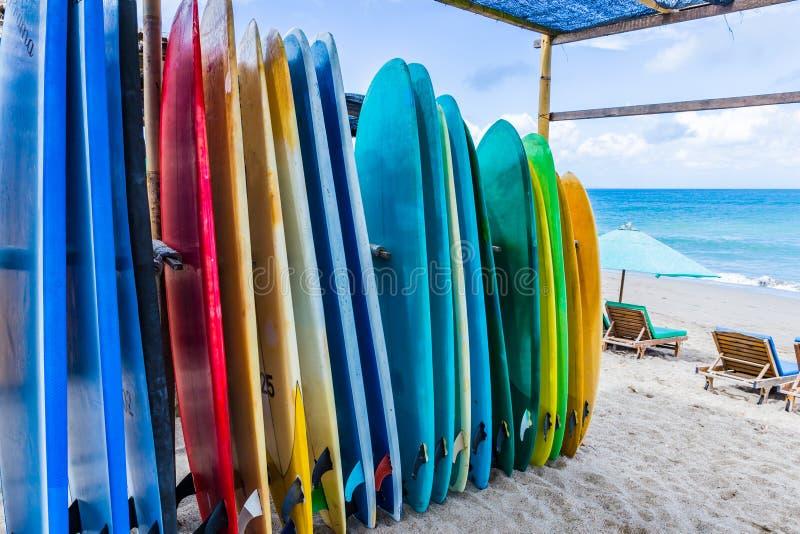 不同颜色和大小冲浪板在海滩站立在巴厘岛 免版税库存照片