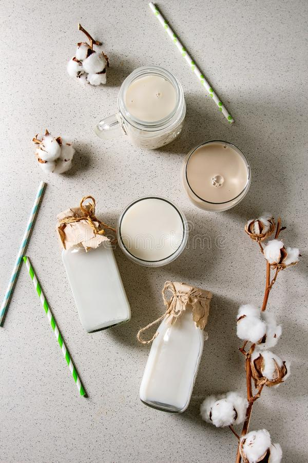 不含乳制品的牛奶品种  免版税库存图片