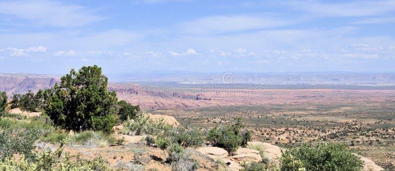 不尽的亚利桑那风景 免版税库存照片