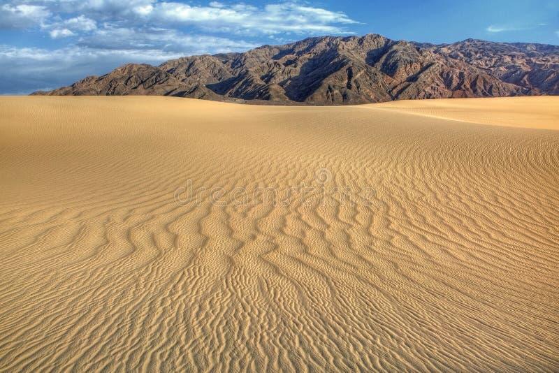 不尽的沙丘 免版税库存照片