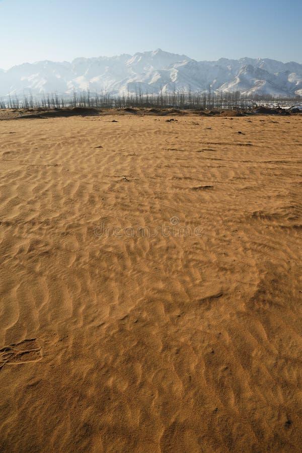 不尽的沙漠 库存照片