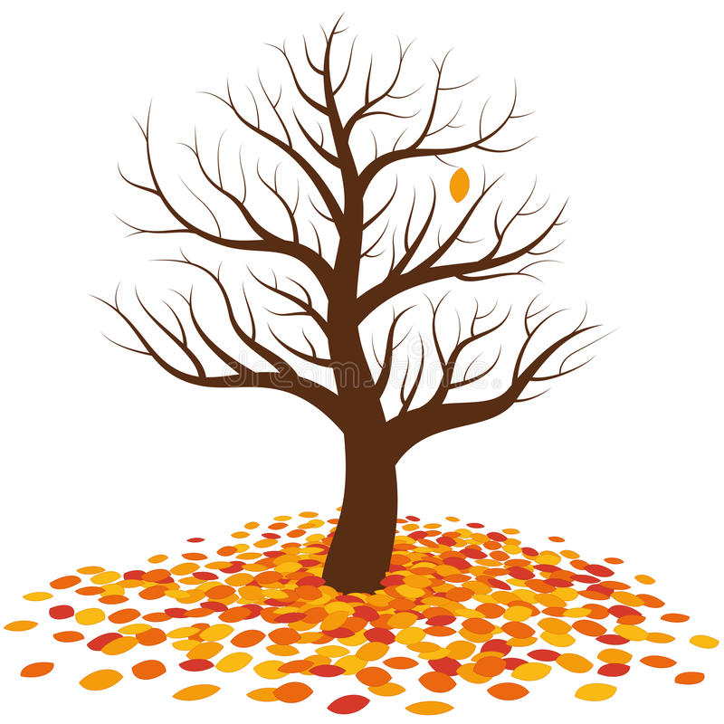 不生叶的树秋天叶子秋天 皇族释放例证
