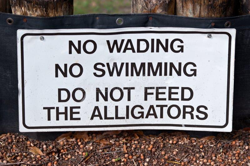 不要喂养鳄鱼 库存照片