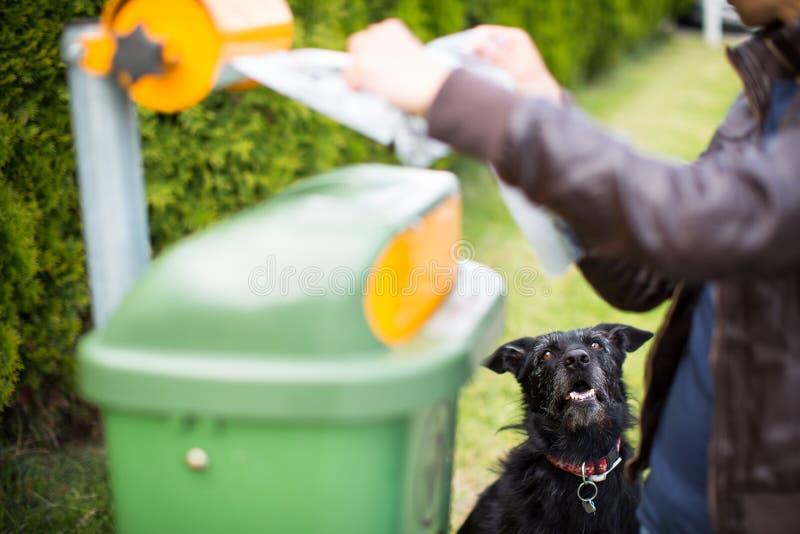 不要让您的狗faul! 免版税库存照片