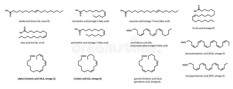 不饱和脂肪酸(设置) 向量例证