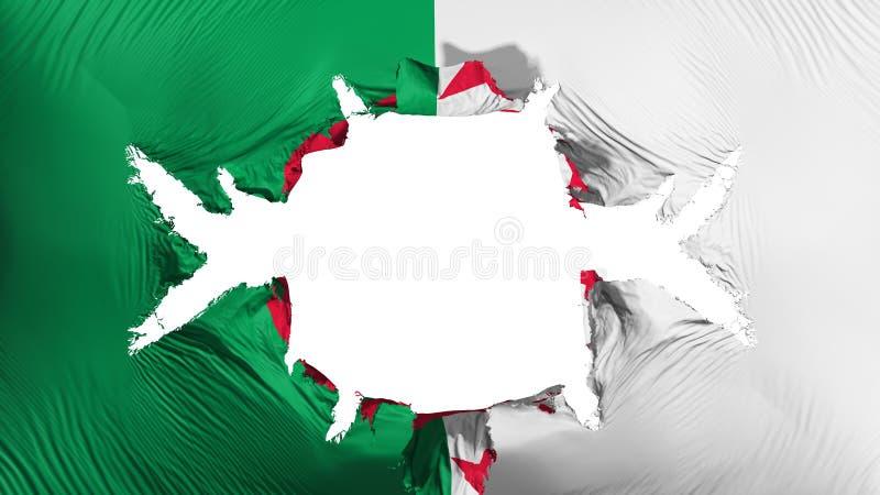 与一个大孔的阿尔及利亚旗子 库存例证