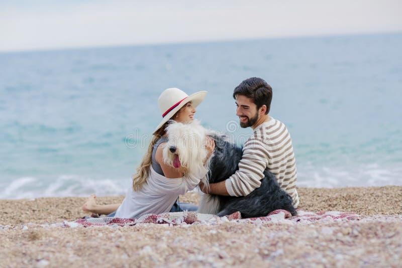 与一个夫人的供选择的家庭一起一个人和狗在海滩享受在友谊和partenership的一顿野餐 库存照片