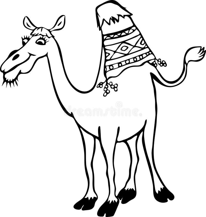 与一个小丘的滑稽的骆驼 皇族释放例证
