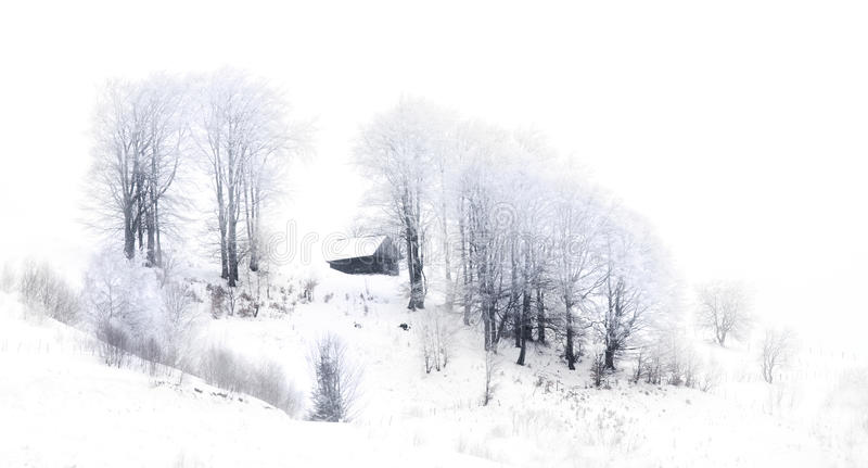 美丽如画的冬天场面 免版税库存图片