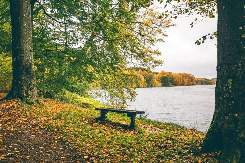 与一个小长木凳的秋天风景 免版税库存图片