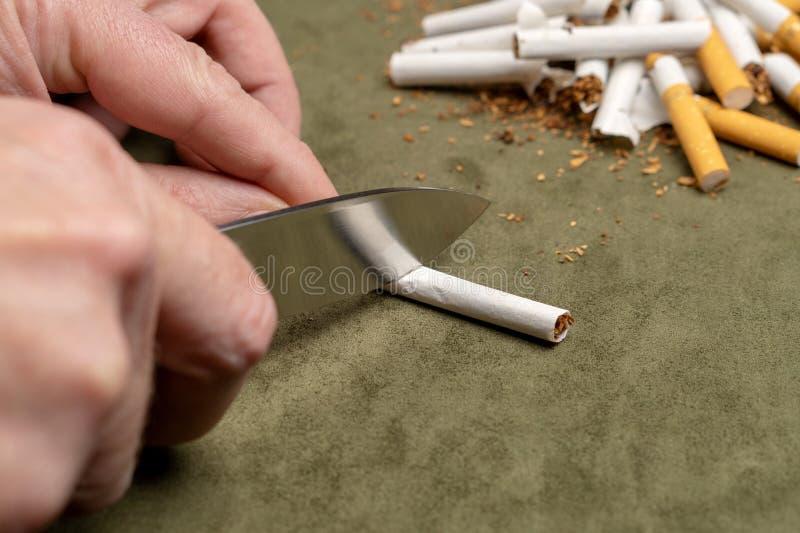 与一个恶习战斗 一个人切开与一把刀子的一根香烟在堆的背景残破的香烟 免版税库存照片