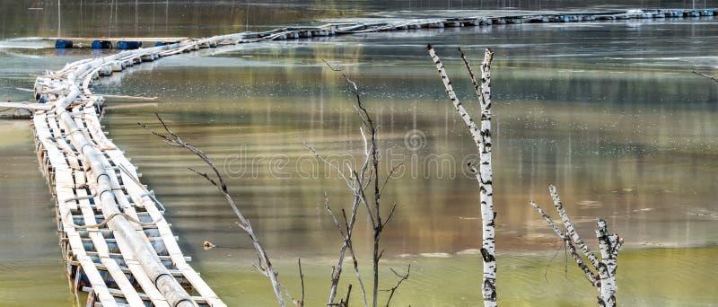 与一个木桥的五颜六色的风景在含毒物污染了湖由于铜采矿 库存照片