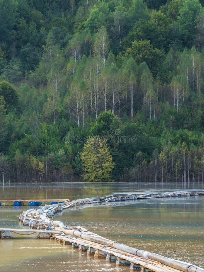 与一个木桥的五颜六色的风景在含毒物污染了湖由于铜采矿 图库摄影