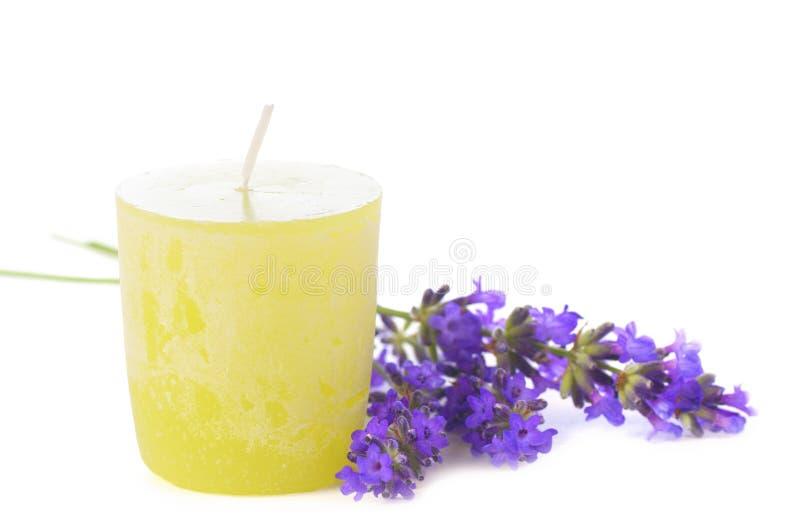 与一个未被照亮的黄绿色蜡烛的甜紫色淡紫色在白色背景 免版税库存图片