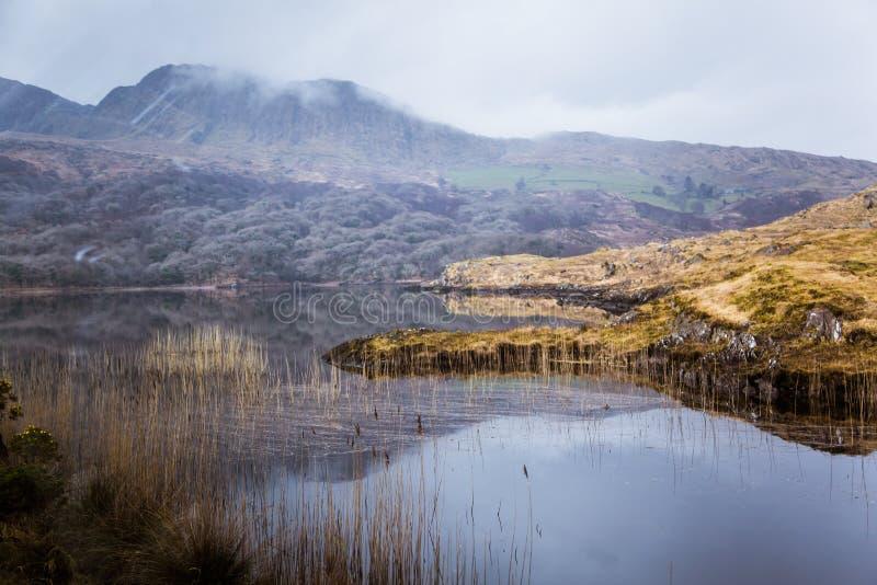 与一个湖的一个美好的爱尔兰山风景在春天 免版税图库摄影