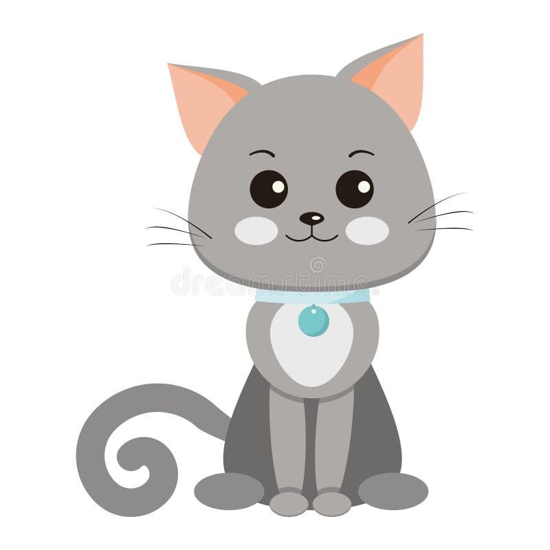 与一个白色斑点的甜和逗人喜爱的微笑的光滑头发的灰色猫在胸口,有大奖章的衣领 皇族释放例证