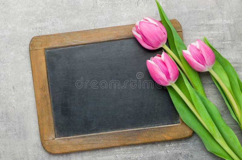 与一个空的黑板的三桃红色郁金香 库存照片