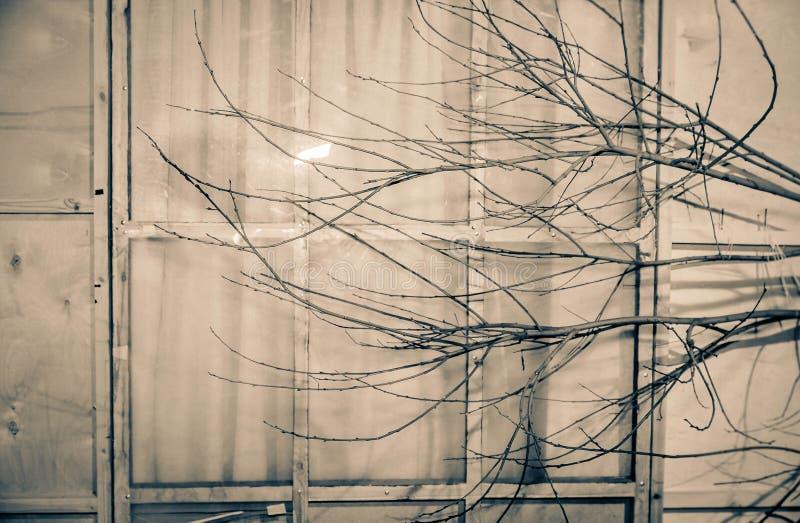 与一个窗口的抽象背景与闭合的帷幕 免版税库存照片