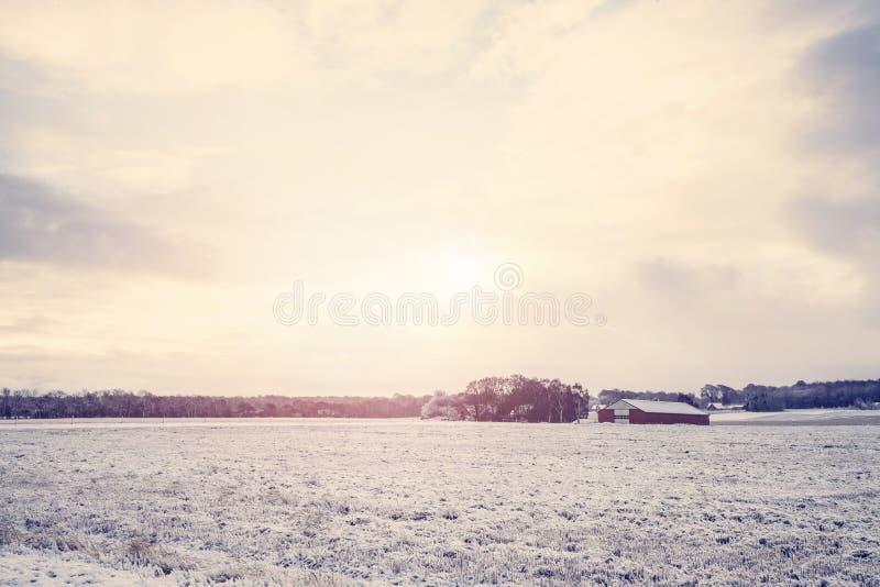 与一个红色谷仓的农村冬天风景 库存照片