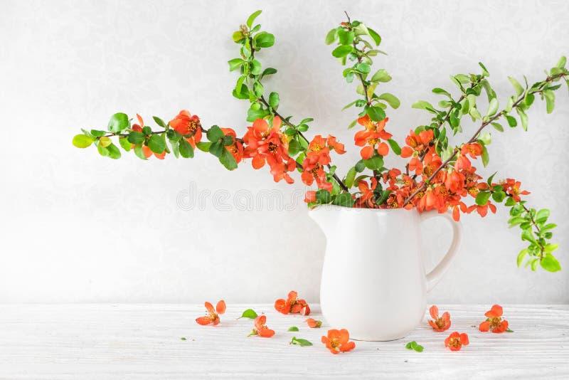 与一个美丽的橙色日本柑橘花的静物画在与拷贝空间的白色木桌上 免版税库存照片