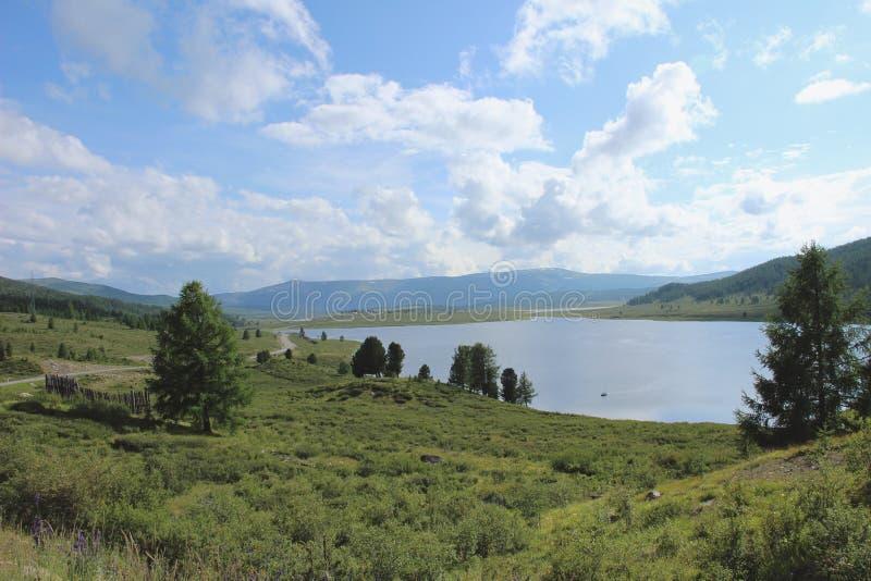 与一个美丽的湖的夏天风景 免版税库存照片