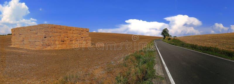 与一个遥远的动乱的预兆对比的干燥农业土地在热浪期间在中欧在jully 2018年 免版税库存照片