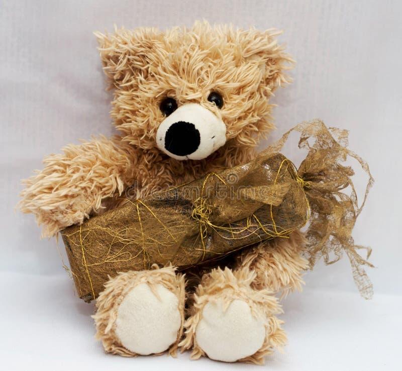 与一件礼物的玩具软的熊灰棕色在腿为一个生日 免版税库存照片