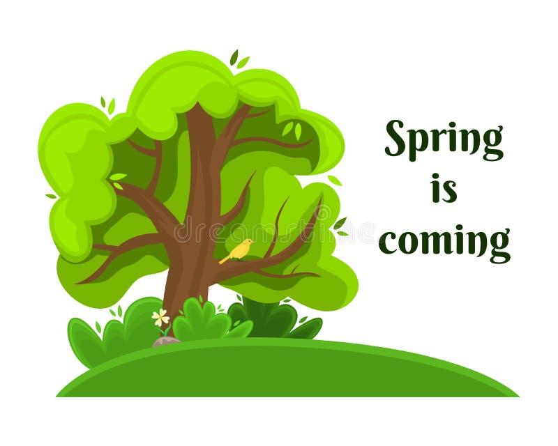 与一只鸟的春天树在分支 查出的图象 向量例证