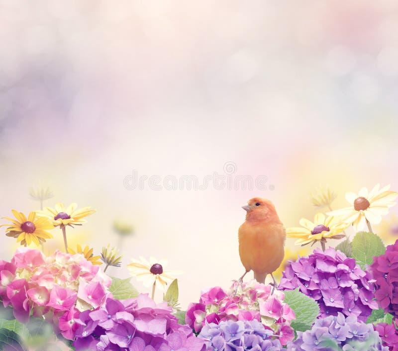 与一只黄色鸟的花背景 免版税库存照片