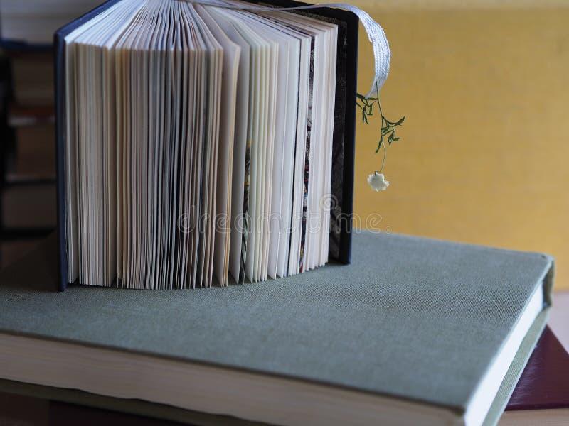 与一朵干燥小花的书签在书背景  库存照片
