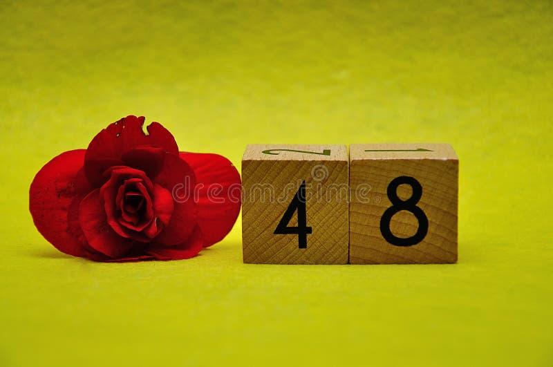与一朵红色花的第四十八 免版税库存图片