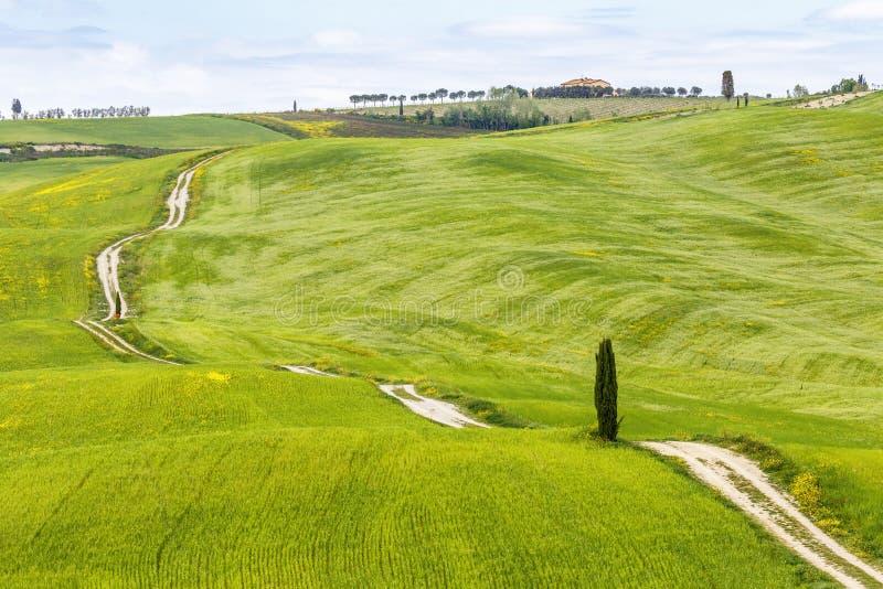 与一条土路的滚动的农业风景横跨领域 免版税库存照片