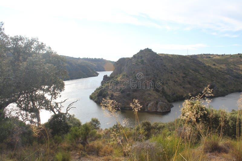 与一条大河和一些巨大的山沟的美好的图象 免版税库存照片