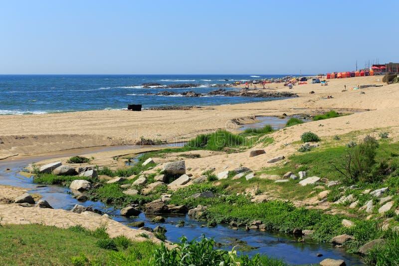 与一条小河的海海滩在夏天 库存照片