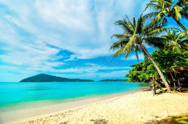 与一棵棕榈树的空的海滩在一个热带海岛上 在海的假期 库存照片