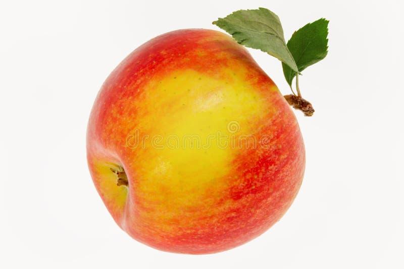与一片叶子的图象一苹果在白色背景 库存照片