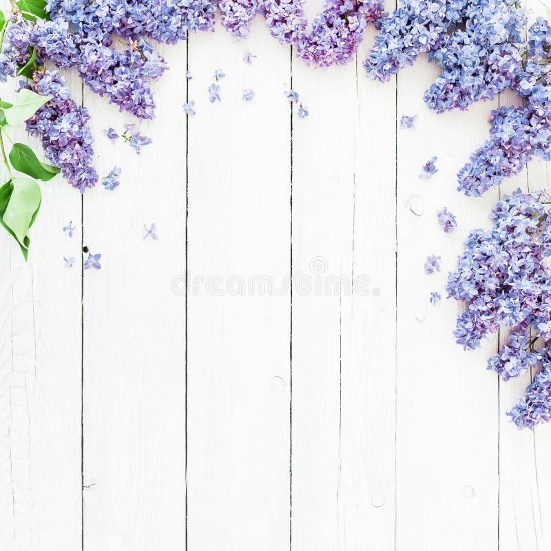 与丁香的花卉框架构成开花在白色背景的分支 平的位置,顶视图 免版税库存照片