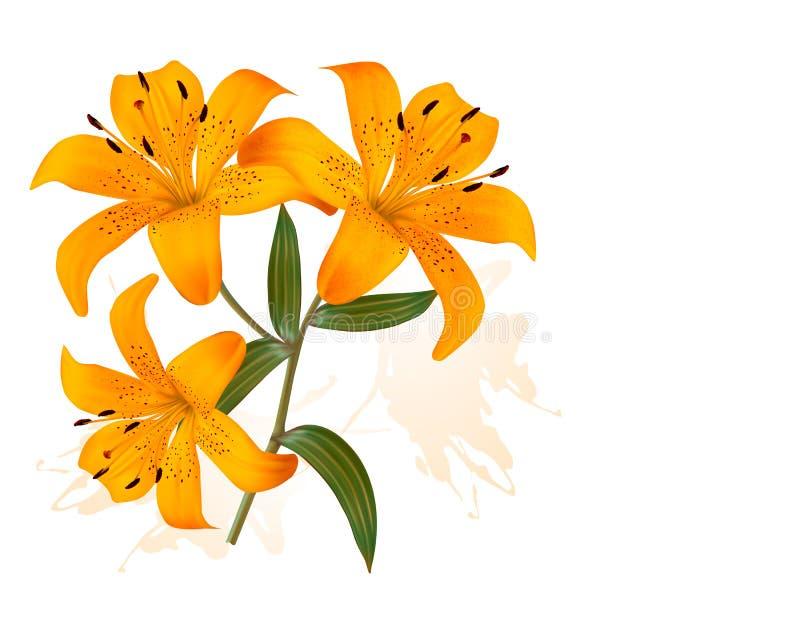 与三个美丽的百合的花背景 向量例证