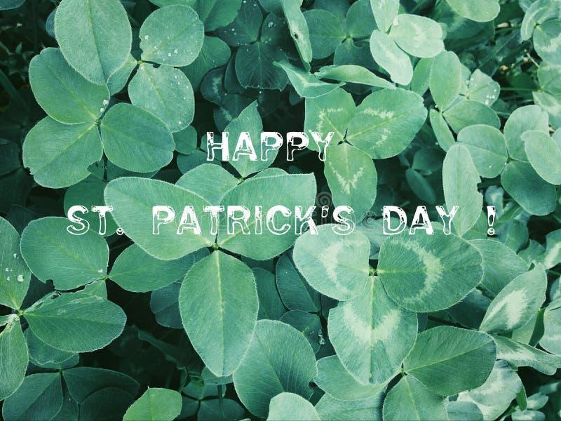 与三叶草的背景 圣帕特里克` s天假日标志 库存图片