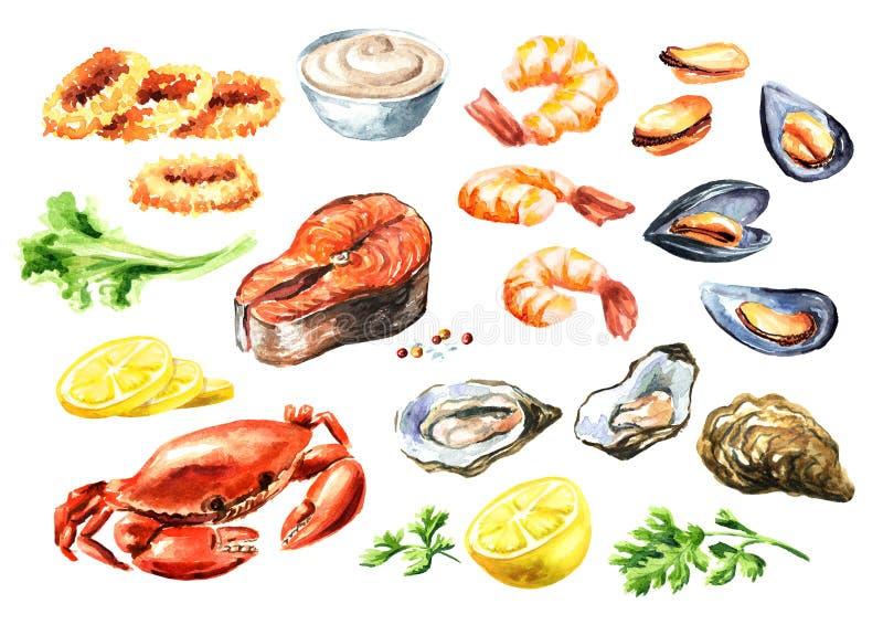 与三文鱼、乌贼、螃蟹、淡菜、牡蛎、虾、柠檬和绿色,水彩手拉的例证的煮熟的海鲜集合 皇族释放例证