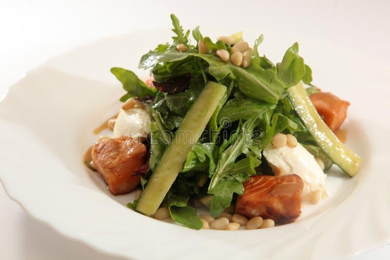 Download 与三文鱼和乳酪的沙拉 库存照片. 图片 包括有 绿色, 可口, 膳食, 食物, 莴苣, 用餐, 干酪, 制动手 - 72364018