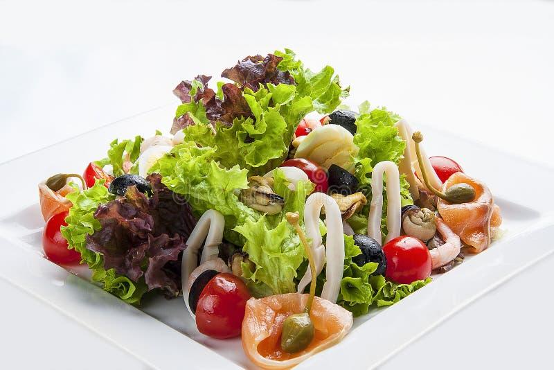 与三文鱼和海鲜的沙拉在一块白色板材 免版税库存照片