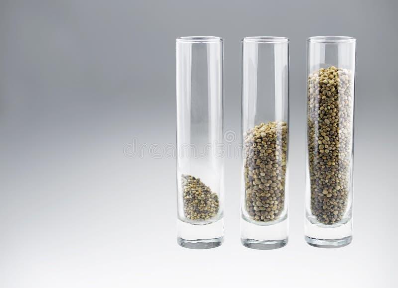 Download 与三的三块玻璃大麻籽 库存图片. 图片 包括有 成份, 食物, 蔬菜, browne, 健康, 宏指令, 特写镜头 - 59106983
