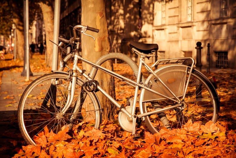 与下落的叶子的秋天场面在地面围拢一辆老灰色自行车 免版税库存图片