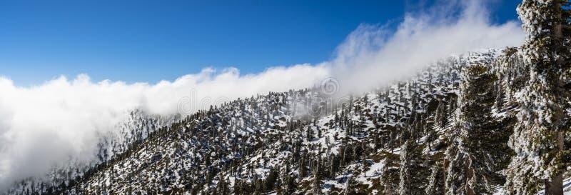 与下落的雪和白色云彩海的晴朗的冬日在足迹的对Mt圣安东尼奥(Mt鲍尔迪),洛杉矶县, 免版税库存图片