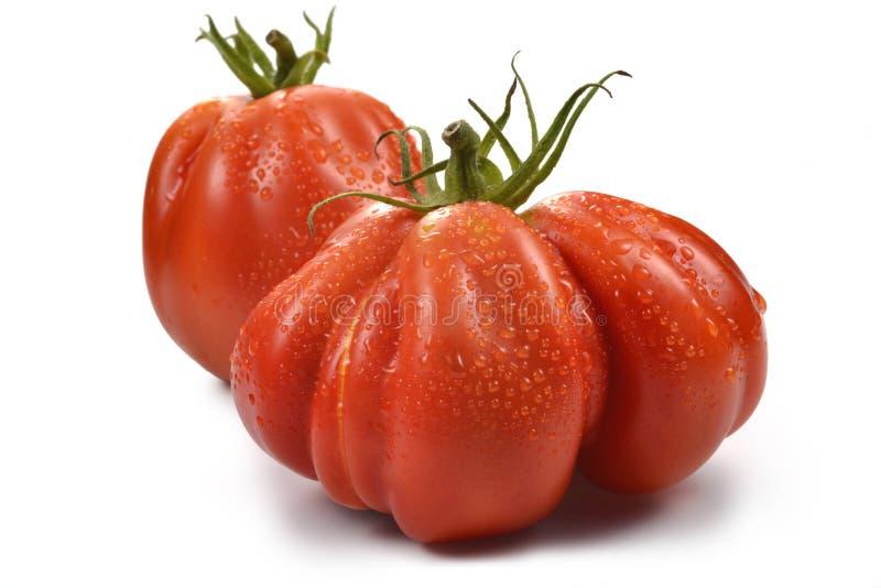 与下落1的两个牛排蕃茄 库存照片