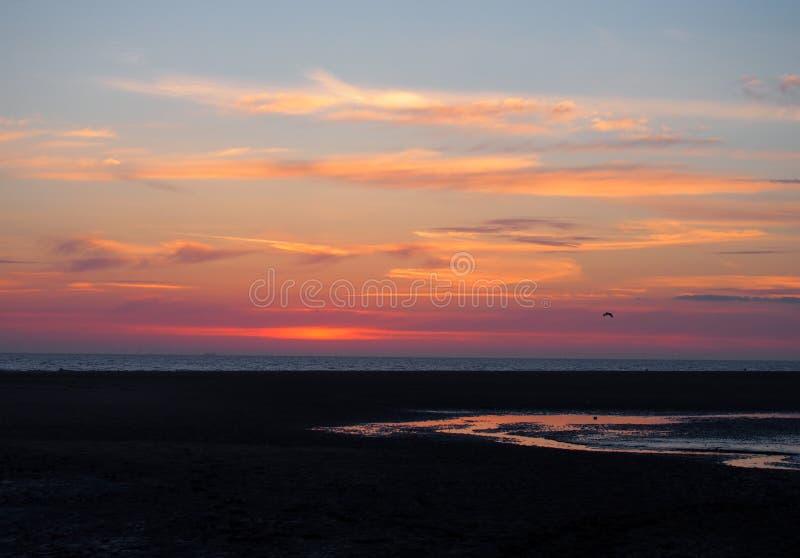 与下跌在与发光的日落以后的黑暗的暮色海滩场面照亮了在一个黑暗的海滩的水反映的云彩 库存图片
