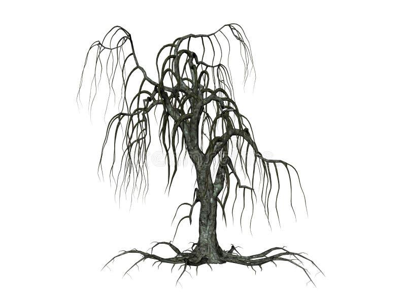 与下降的分行的结构树
