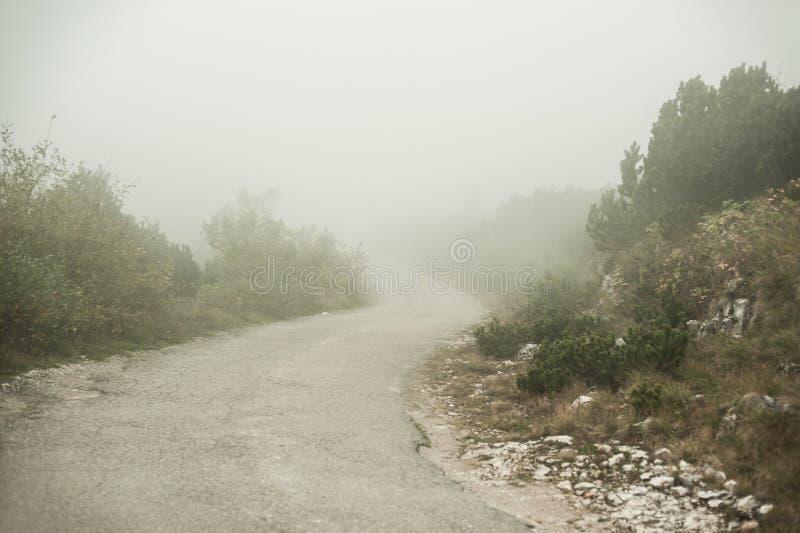 与不可思议的大气和神奇雾的风景在路 免版税库存图片